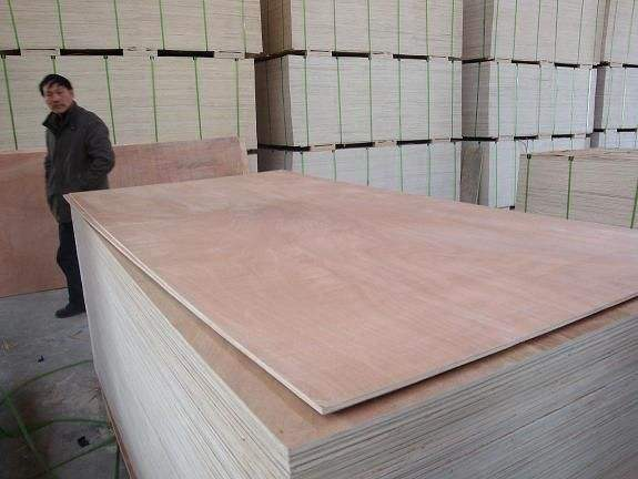 poplar core commercial plywood price
